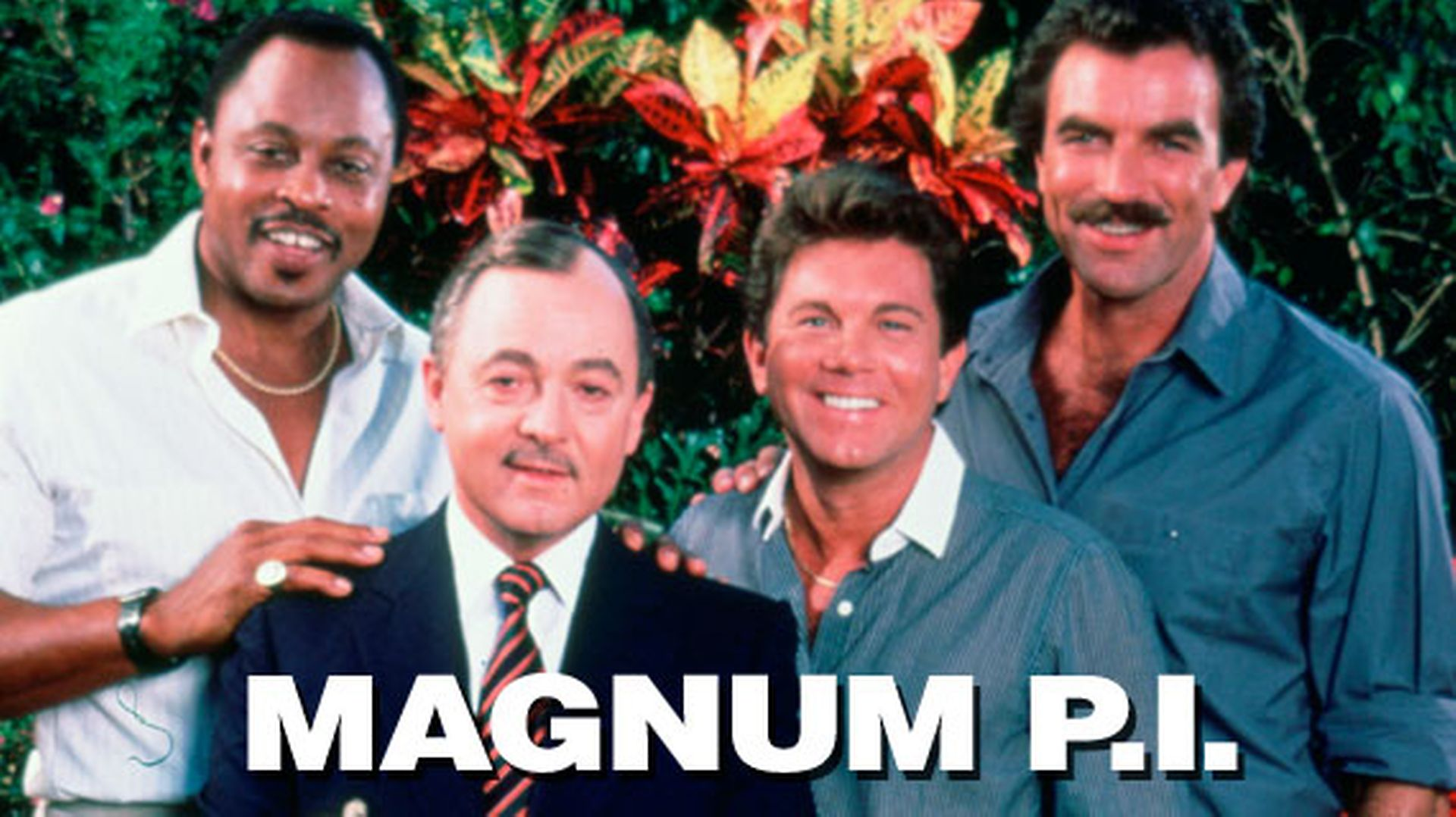 Do You Think You Are A Magnum PI. Fan?