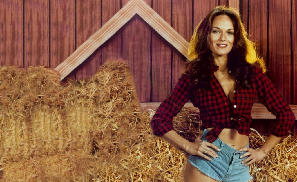 20 Sexy Photos Of Catherine Bach Which Are Excessively Hot